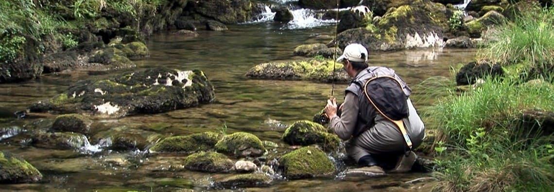 Pêche à la mouche dans les Pyrénées-Atlantiques